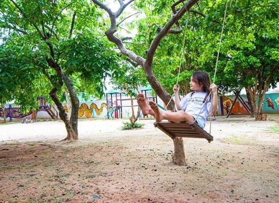 Árvores e menina no balanço